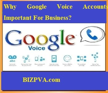 Why Google Voice Accounts Important For Business