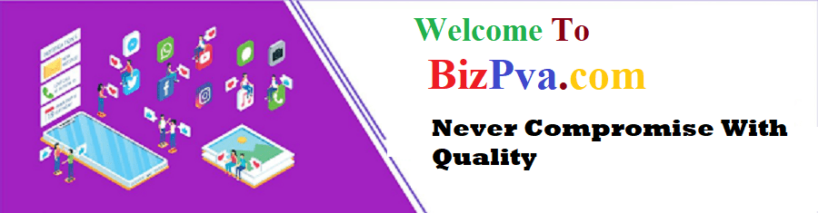 bizpva.com